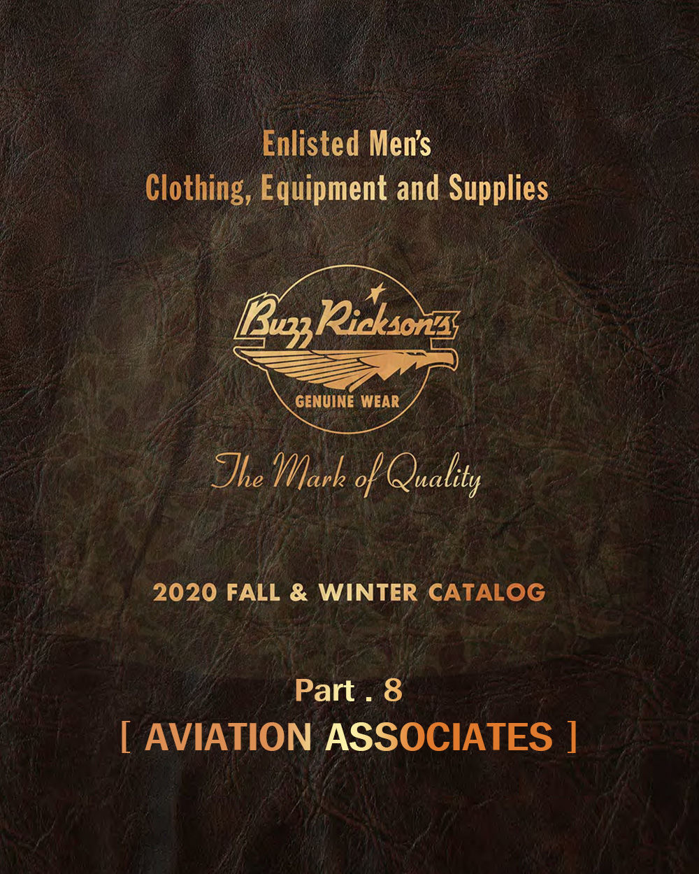 20FW BUZZRICKSONS AVIATION ASSOCIATES (PART.8)